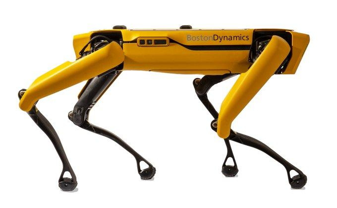 Picture of Boston Dynamics Spot robot dog